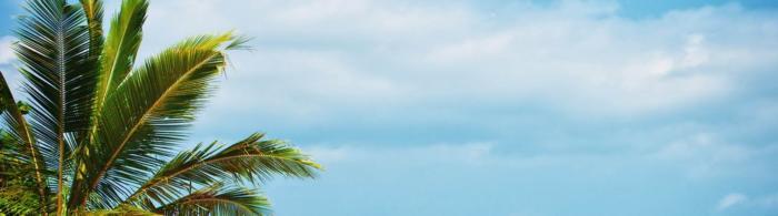 море и пляж (10)