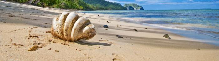 море и пляж (129)