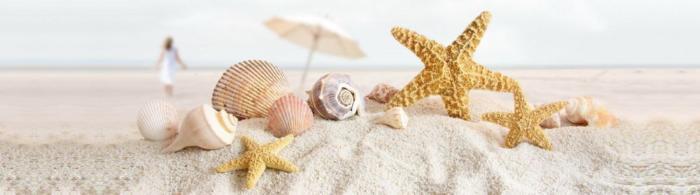 море и пляж (135)