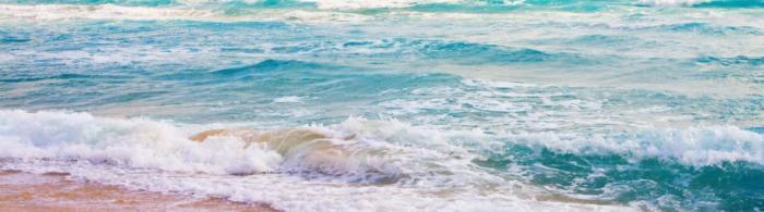 море и пляж (15)