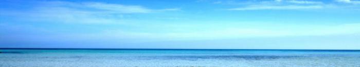 море и пляж (20)