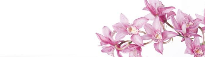 цветы (106)