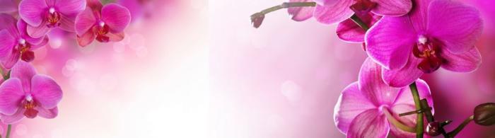 цветы (108)