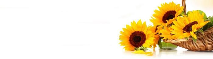 цветы (119)