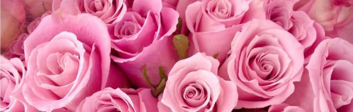 цветы (127)