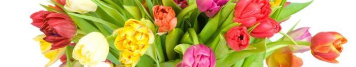 цветы (15)