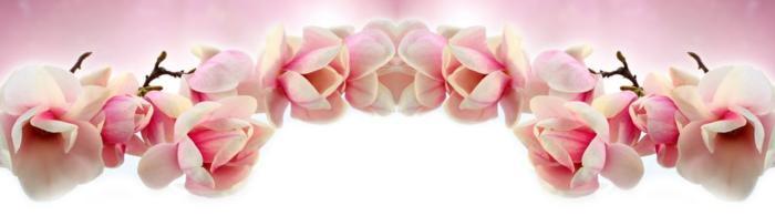 цветы (193)
