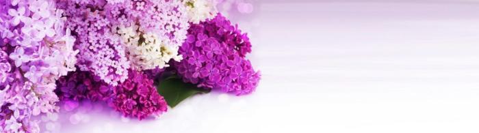 цветы (194)