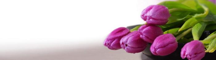 цветы (206)