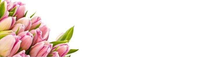 цветы (233)
