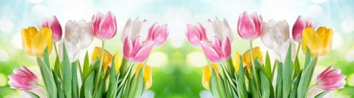 цветы (234)