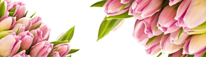 цветы (237)
