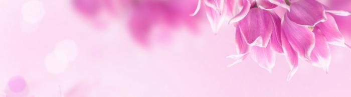 цветы (238)