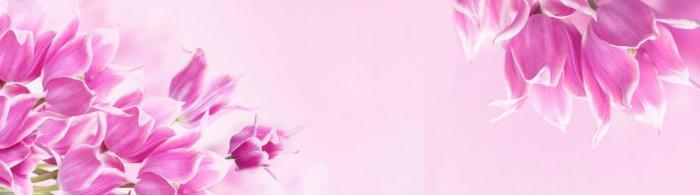 цветы (239)