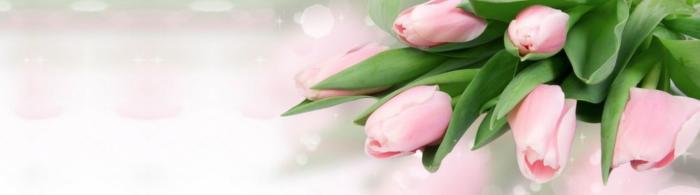 цветы (245)