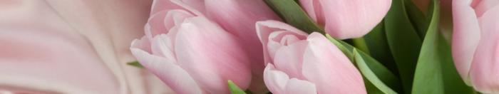цветы (26)