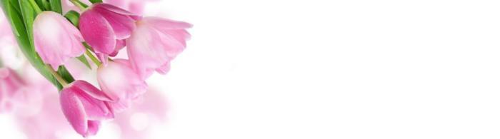 цветы (261)