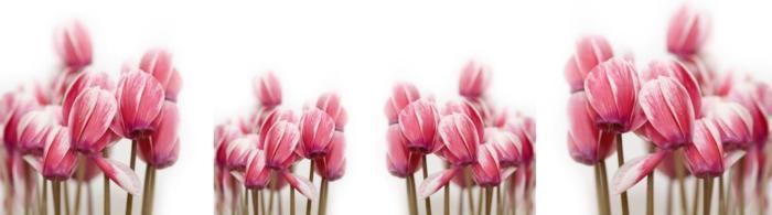 цветы (273)
