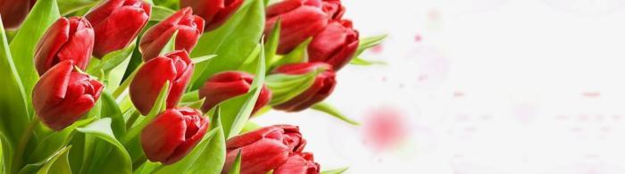 цветы (274)