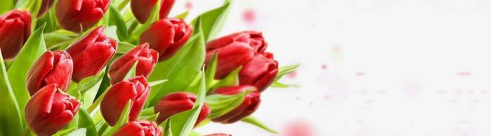 цветы (275)
