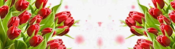 цветы (277)