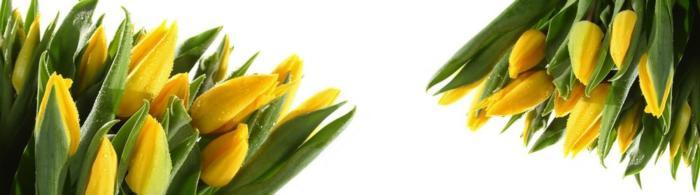 цветы (278)