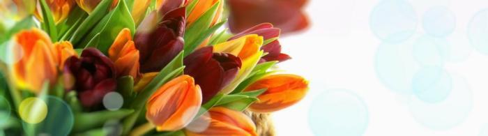 цветы (287)