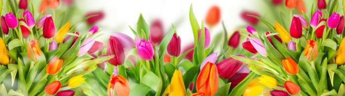 цветы (288)