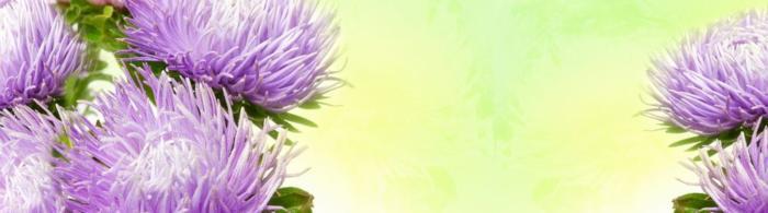 цветы (76)