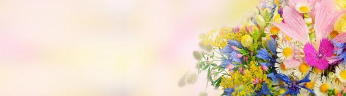 цветы (80)