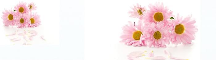 цветы (83)