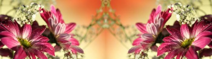 цветы (85)