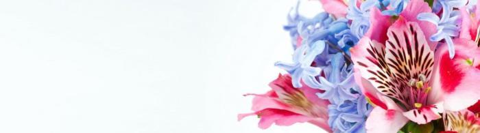цветы (99)
