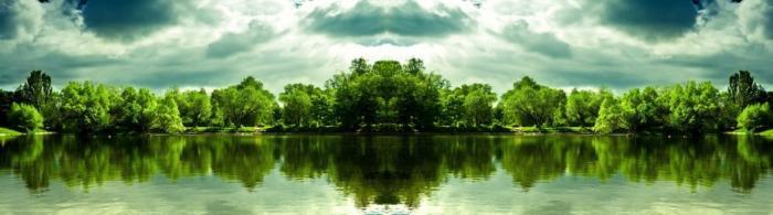 природа (164)